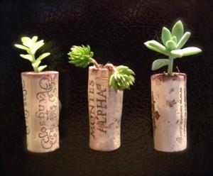 originalne mini kvetinače
