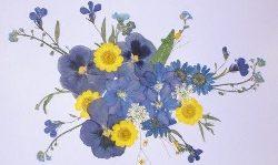 pohladnica s kvetmi