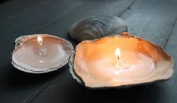 sviečky z mušlí