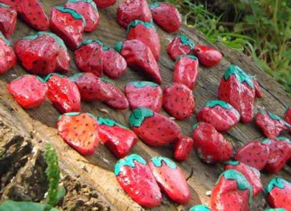 kamienky jahody